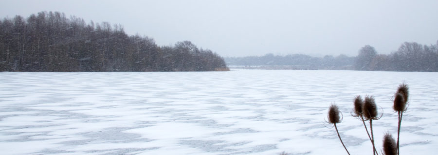 Frozen_Lake_(6817996621)[1]