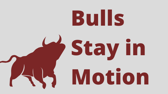 Bull Stay in Motion