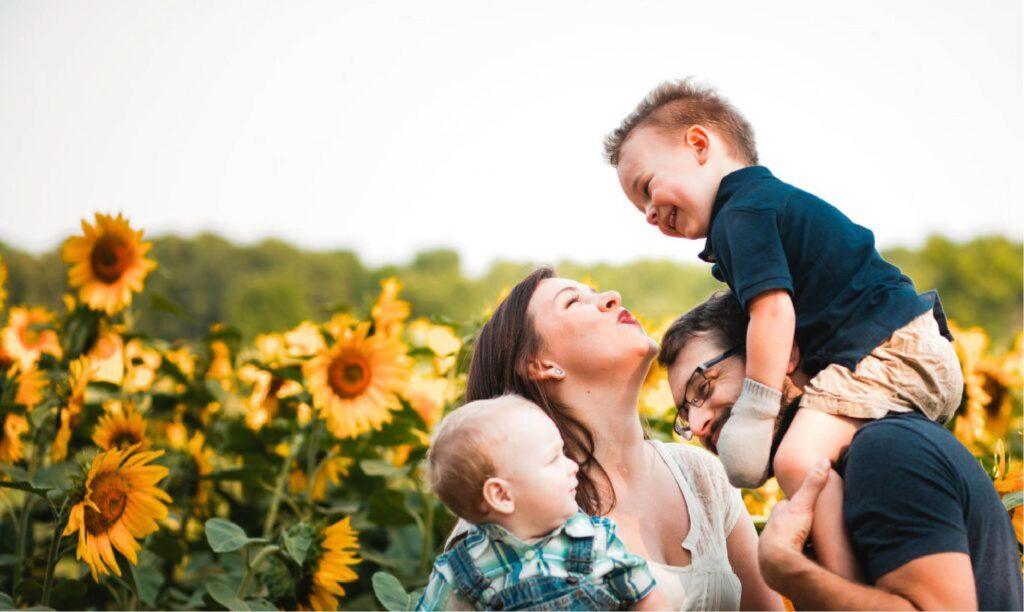 Family walking in the sunflower field